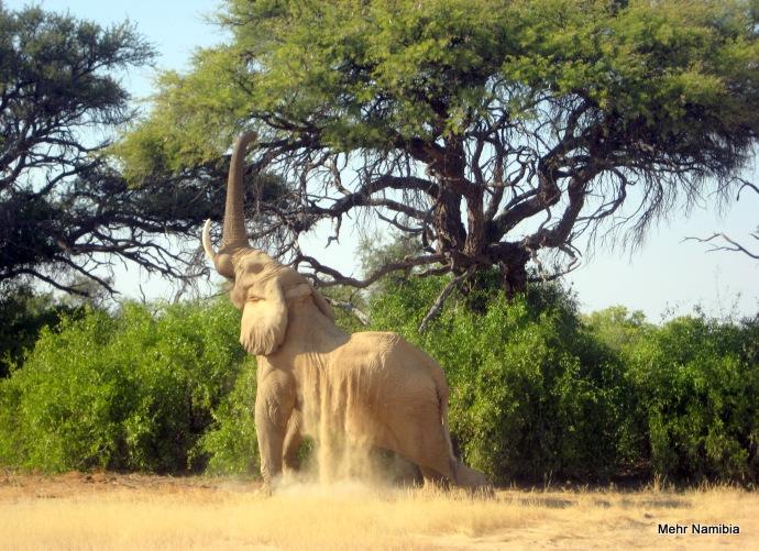 Mehr Namibia - In Namibia bewusst mehr erleben