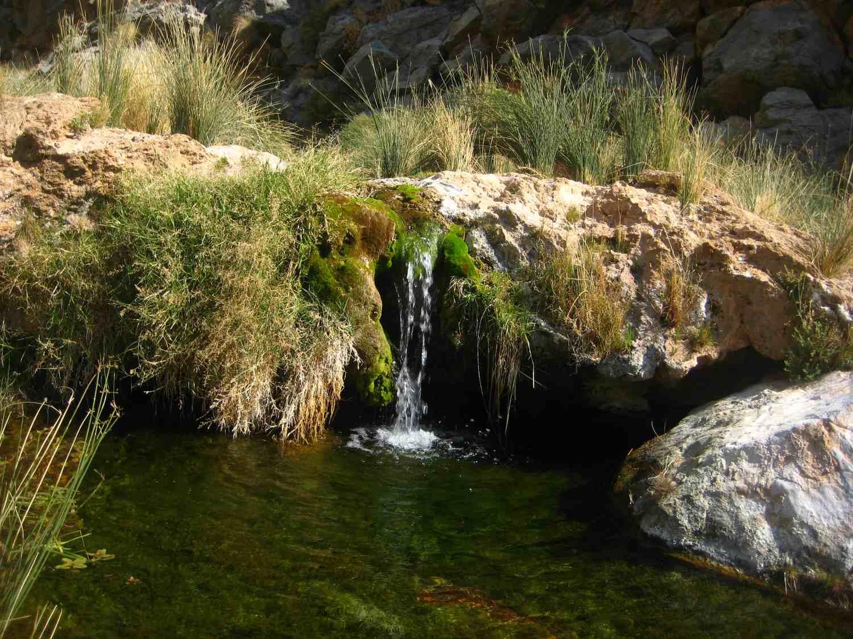 Mit Moos bewachsener kleiner Wasserfall auf dem Naukluft Wandertrail