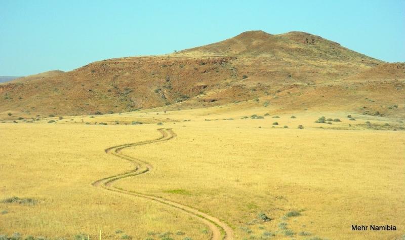 Pfad in der Palmwag Konzession im Nordwesten Namibia's