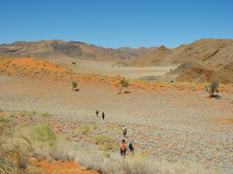 Wanderer in der Namib