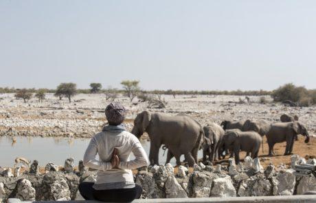 Yoga in Etosha, Okaukuejo WasserlochWasserloch mit Elefanten