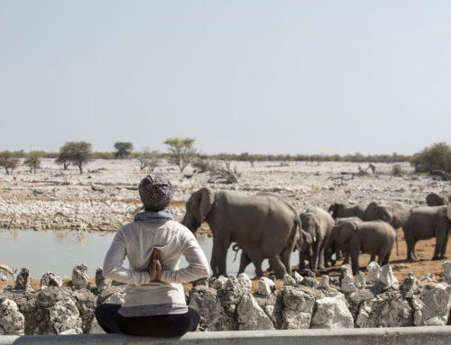 Yoga Reise in Namibia mit Safari – 7 Tage