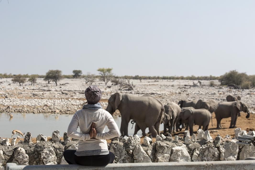 Yoga Safari - Okaukujeo Wasserloch Etosha Nationalpark