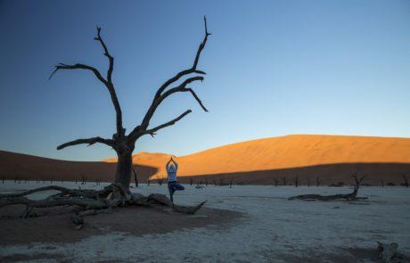 Ygoa im Dead Vlei unter den höchsten Dünen der Welt