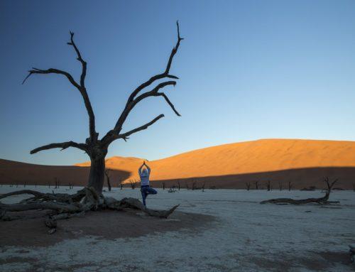 Yoga Reise in Namibia: Safari, Wüste, Weite – 10 Tage