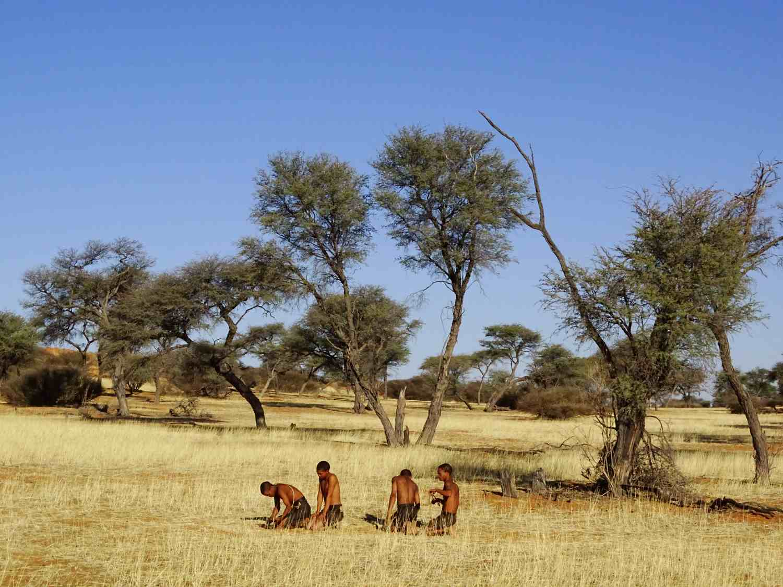 Buschleute demonstrieren ihre Kultur in der Kalahari