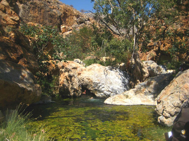 Kleiner Pool im Naukluft Gebirge