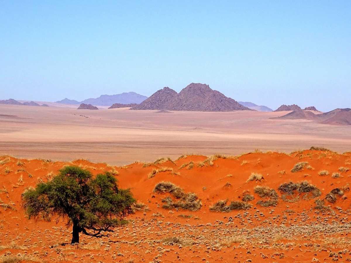 NamibRand Natre