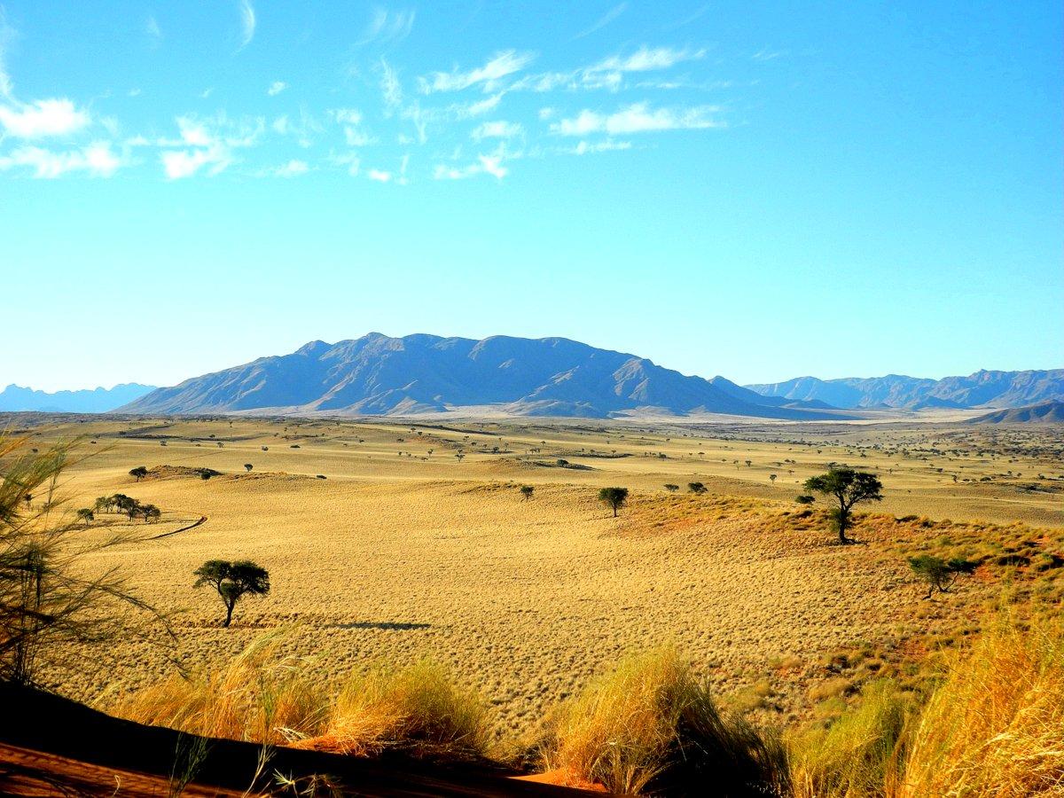 NamibRand Nature Reserve Landschaft mit bewachsenen Dünen und Berg