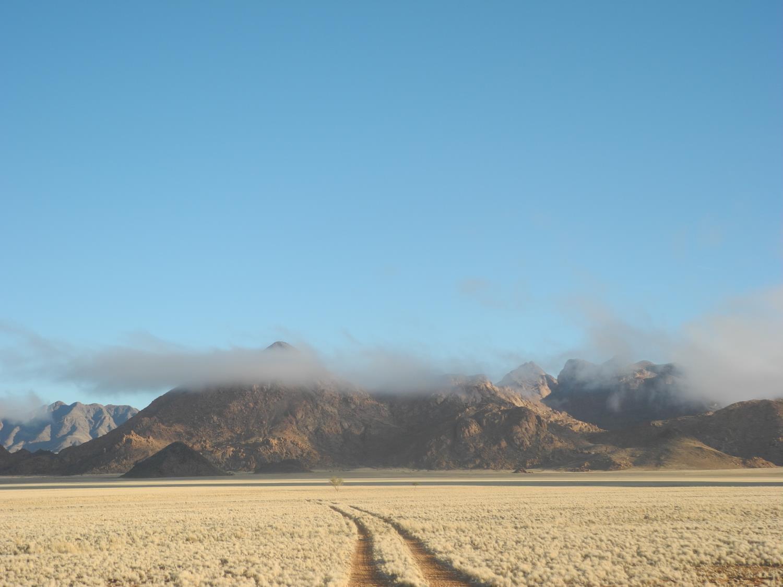 Strahlender Wintertag mit Nebel in der Namib