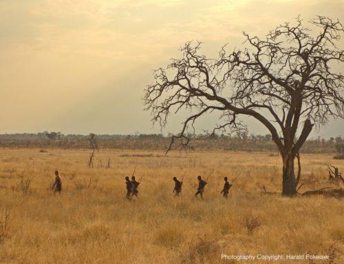 Zurück zur Natur – 5 Tage mit den Buschleuten
