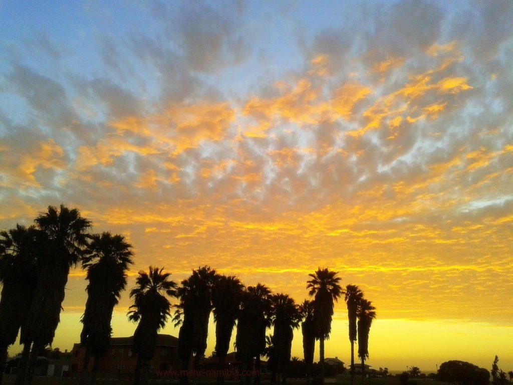 Sonnenuntergang mit Palmen in Swakopmund Namibia