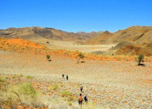 Wandern in der den Dünen und Bergen der Namib