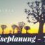 Reiseplanung Namibia - Köcherbäume im Abendlicht