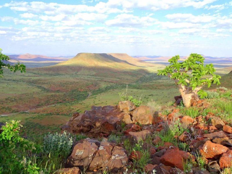 Damaraland Etendeka Berge in Namibia grün