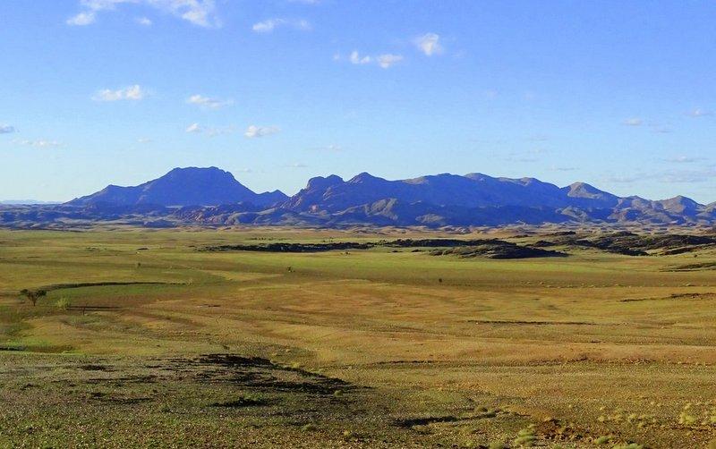 Namib Landschaft grün