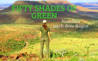 Namibia nach dem Regen