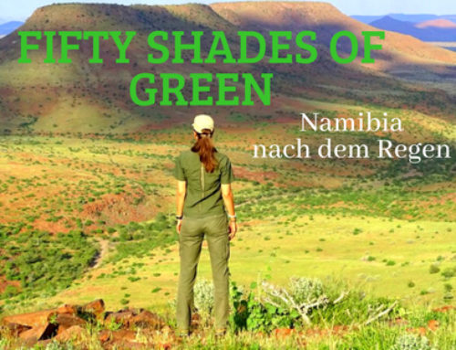 Fifty Shades of Green – Namibia nach dem Regen