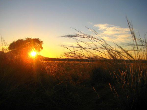 Friedvolle Morgenstimmung im NamibRand Nature Reserve