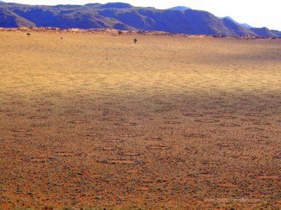 Feenkreise in der Namib