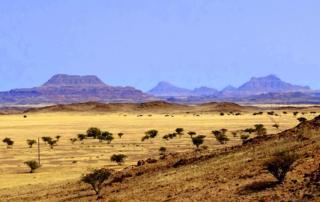 Landschaft im Damaraland Namibia