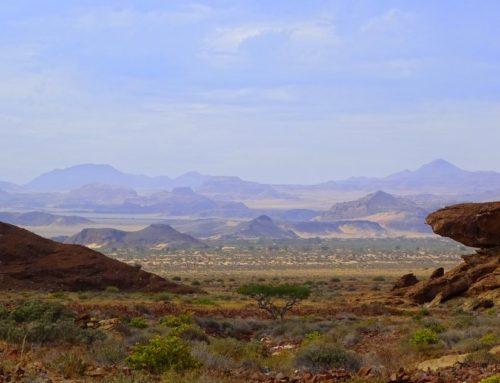 Namibia Safari – Highlights und wildes Namibia unter den Sternen